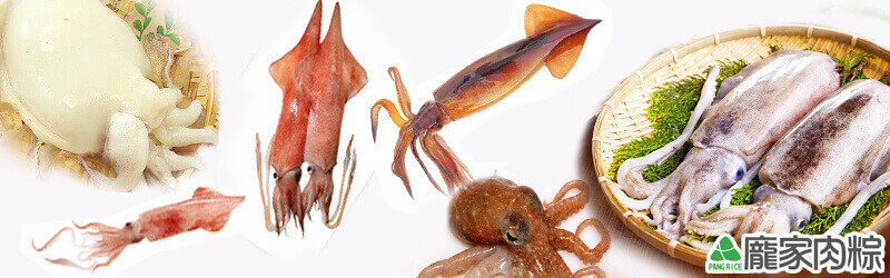 魷魚、花枝、小卷、中卷、鎖管、章魚、軟絲、透抽該如何分辨?